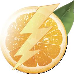 flashdiet_logo